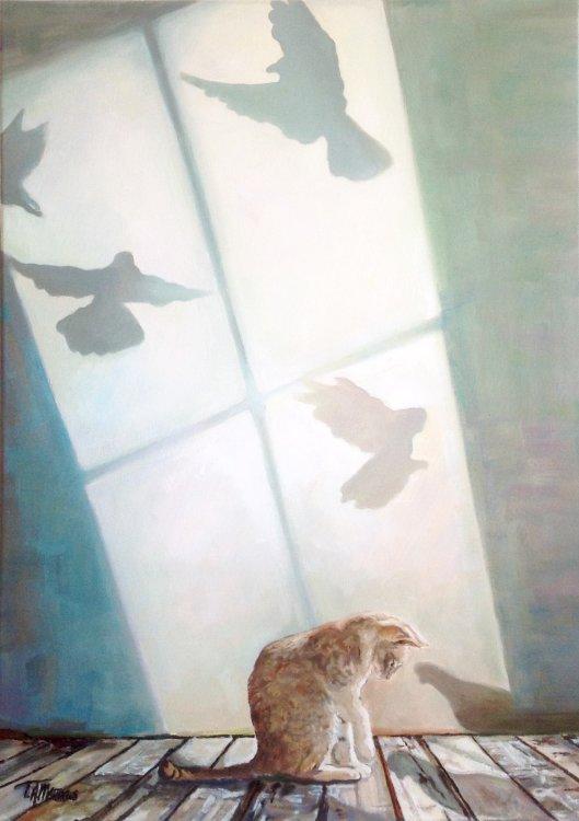 Cat with bird shadow