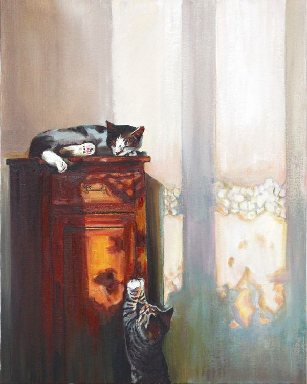 Sunset kittens
