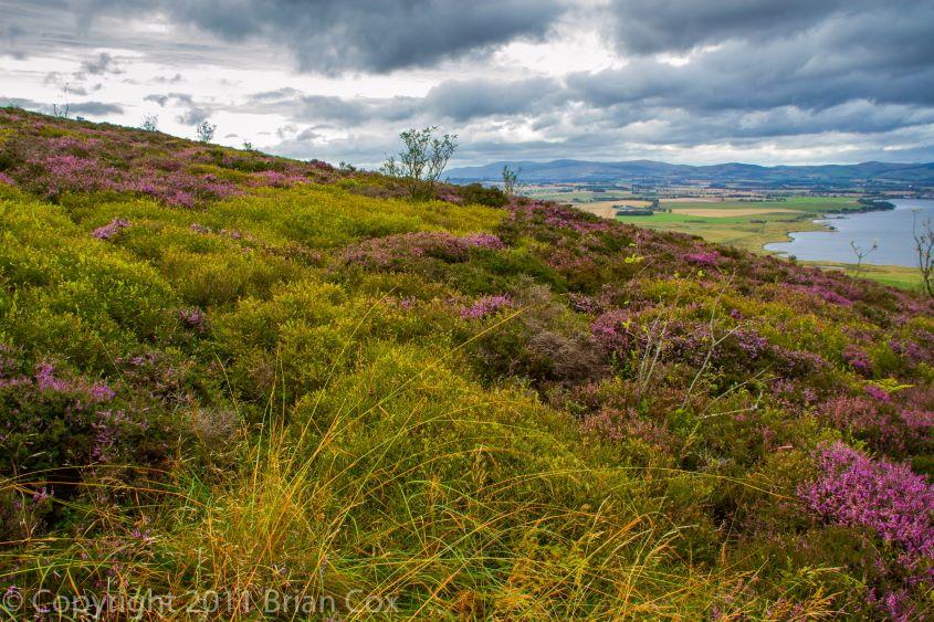 20110910-IMG 3789-Vane Hill, Loch Leven