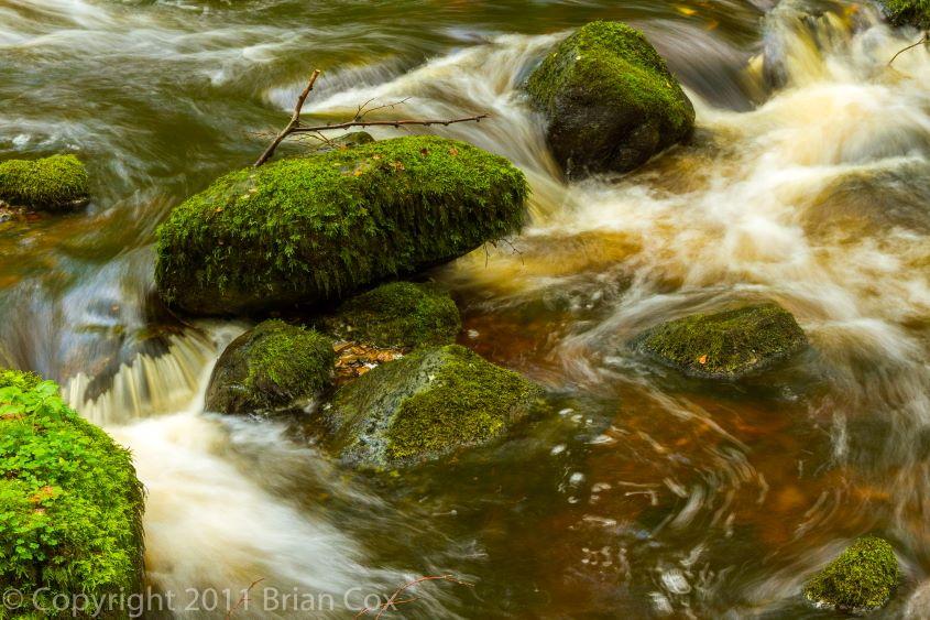 20110917-IMG 3855-Inchewan Burn, Birnam Glen
