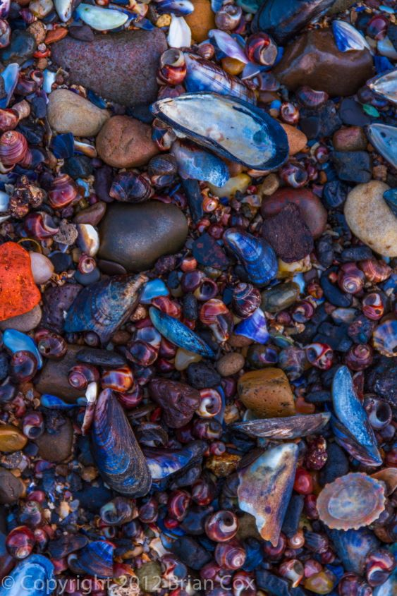 20120107-IMG 4162-Beach Detail, South Queensferry