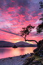 'Fire in the Sky' Otterbield Bay