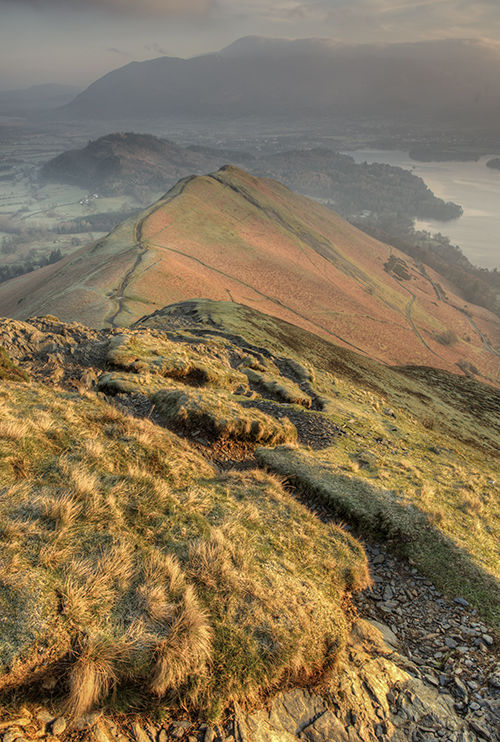 Late March Cat Bells