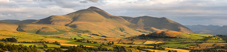 Skiddaw from Catlands Hill