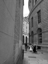 Library Walk- under threat 2012