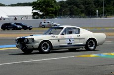 Shelby Mustang GT350 1965