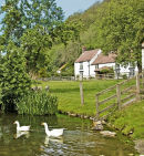 Duck Pond, Stable Cottage