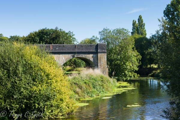 Blandford Forum River Stour