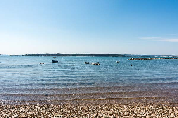 Poole Harbour in Summer
