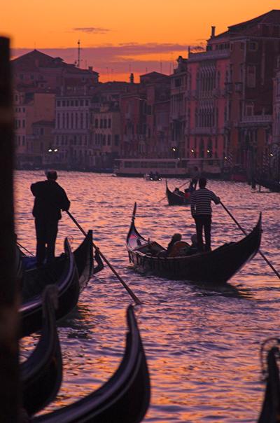 Gondolas in the Sunset, Venice, Italy