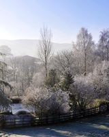 A cold frosty morning