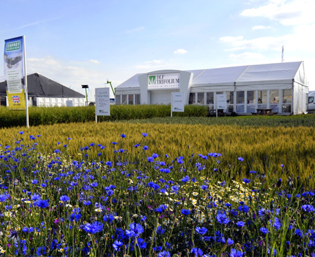 Cereals Show, Lincoln