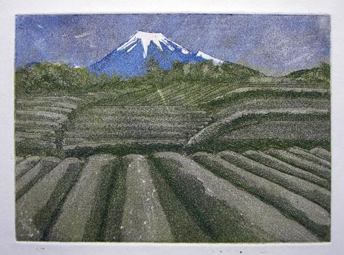 Tea Fields to Fuji - zinc