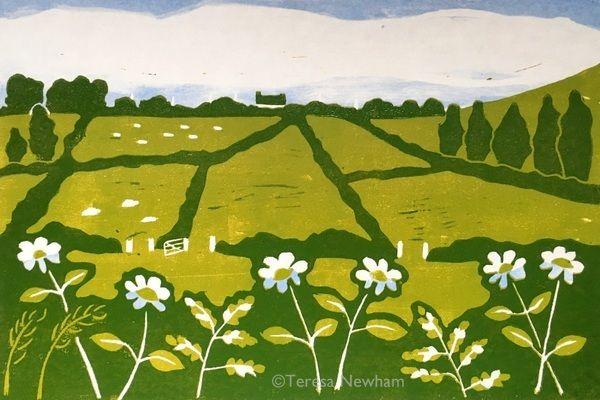 Fields & Flowers, Kilkeaveragh