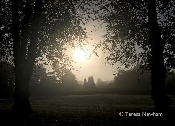 October Morning, Rothamsted Park