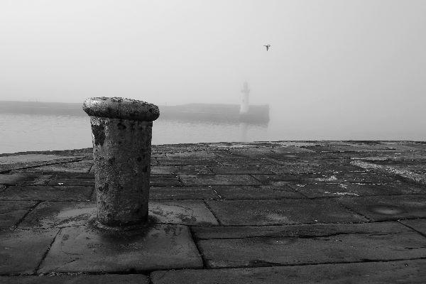 misty harbour 2