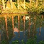 Canalside Sunset