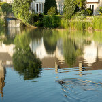 Malmesbury Riverside