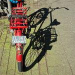 Red Bike Shadow
