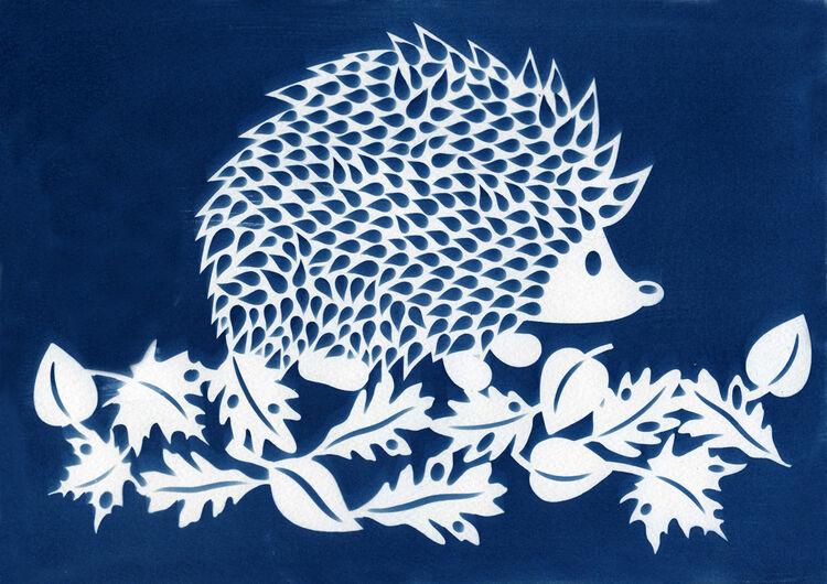 Cyanotype Hedgehog