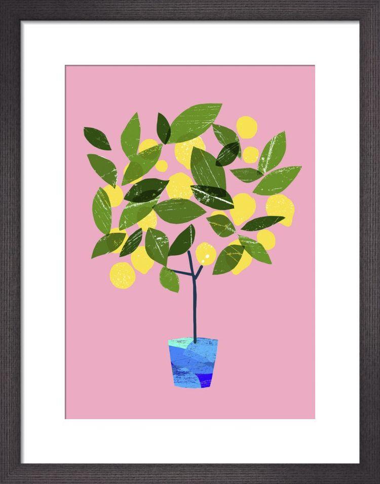 Meyer Lemon Tree by Ana Zaja Petrak