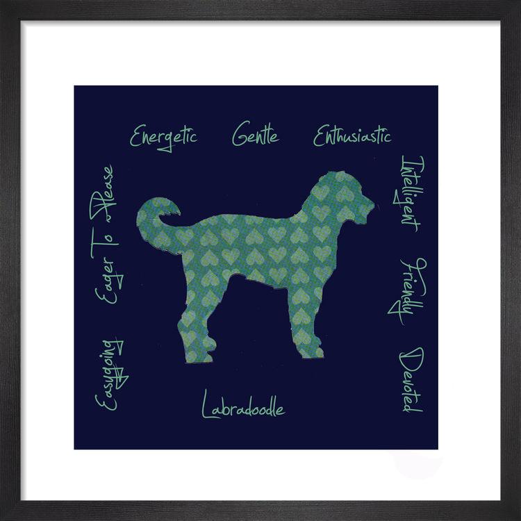 Labradoodle - Dog Trait