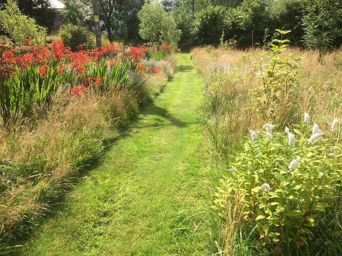 Mown path through Wild Field
