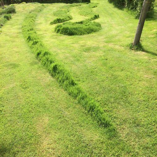 Landform Grassform 1