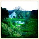 New pond in winter