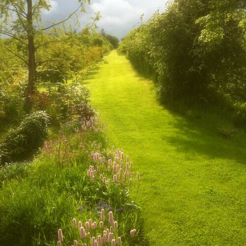 The Long Walk from house to woodland across terraces