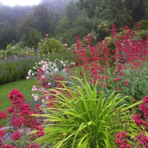 View from Gravel Garden