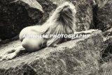 Amazilia Photography 2