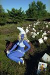 Smurfette (Self Portrait)