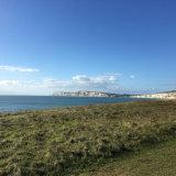 Local Coastal Walk