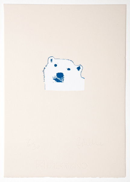 Kingdom Collection. Polar Bear
