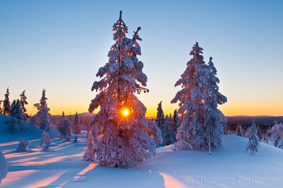 Picture of the Month - January 2014 - Pallas National Park, Finland