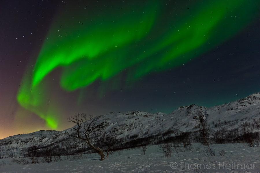 Picture of the Month - February 2014 - Aurora Borealis, Tromsö, Norway