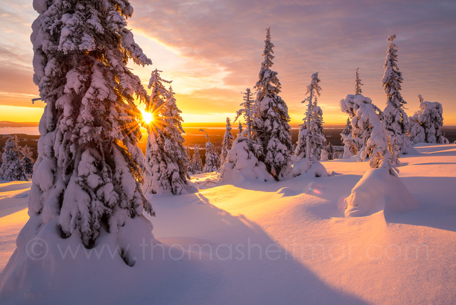 Picture of the Month - January 2017 - Lapland, Kuusamo, Finland