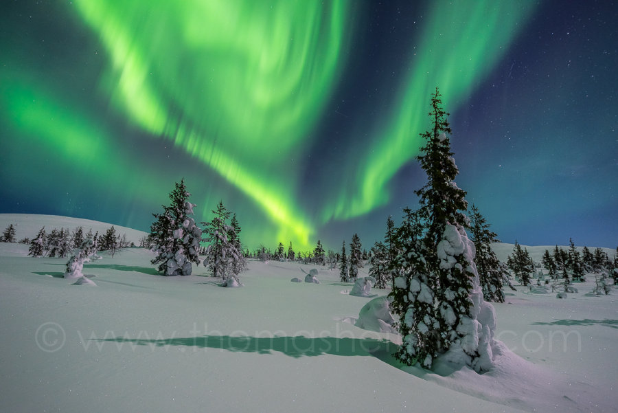 Picture of the Month - February 2016 - Northern Light - Pallas Yllästunturi Nationalpark, Finland