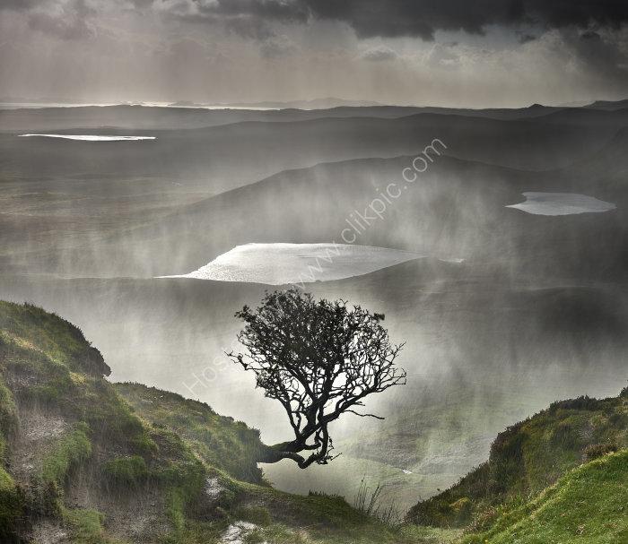 A light highland Shower