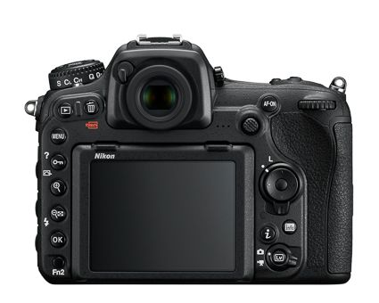 D500 (DX) - similar layout to its full-frame counterpart