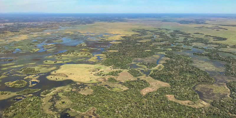 A truly spectacular sight greets you when you fly into the Southern Pantanal from Campo Grande