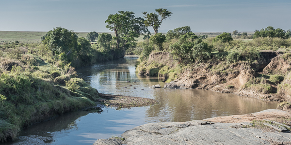 Tributary of the Mara River