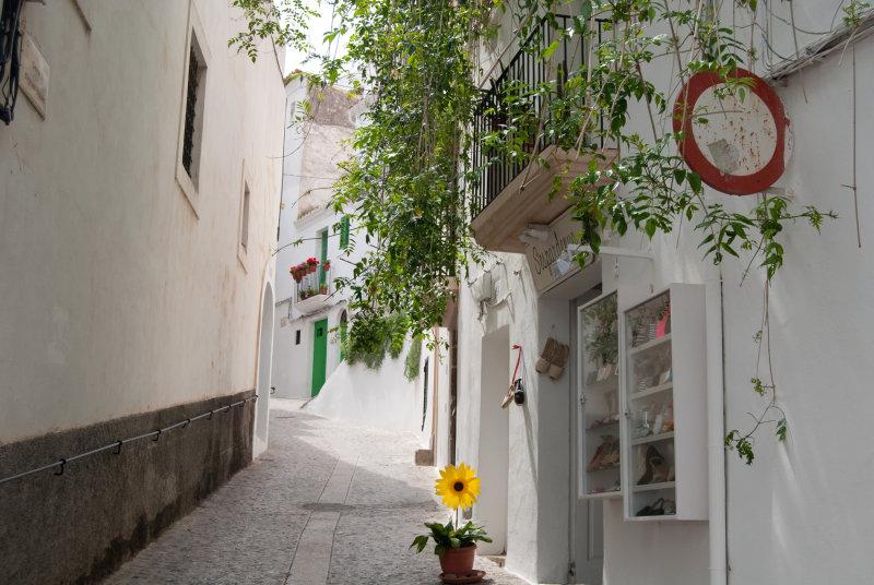 Street in Ibiza Town