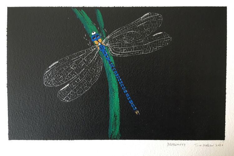 Dragonfly.  Gouache 24 x 15cm