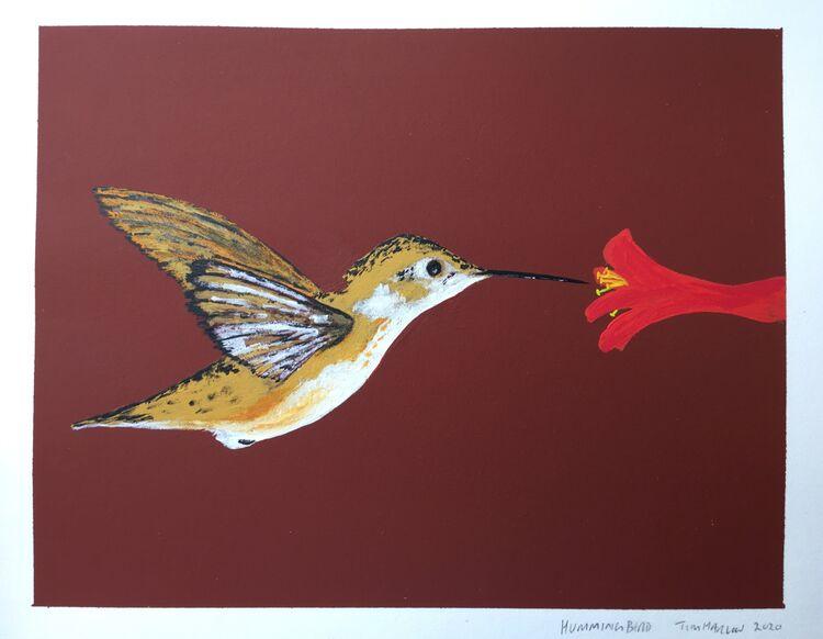 Hummingbird- Gouache. 20 x 15cm