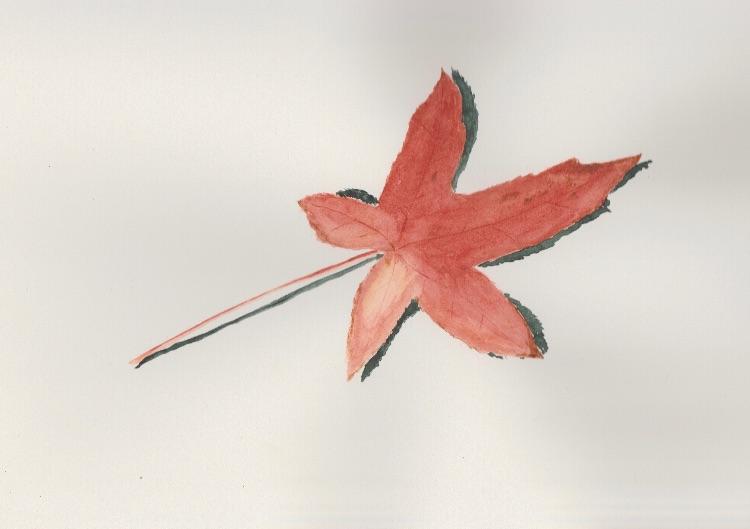 Leaf 3. 27 x 17cm