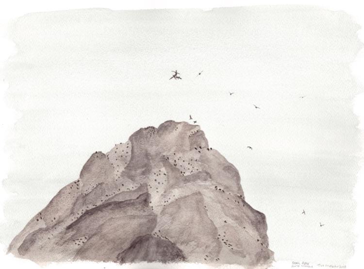 Shag Rock. 23 x 31cm