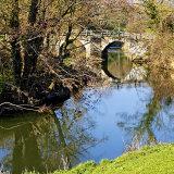 Tellisford Bridge