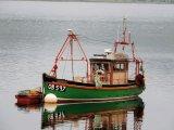 Boat 29